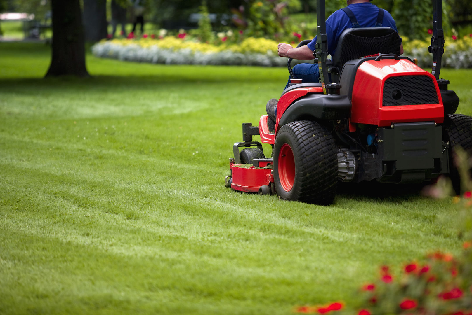 how to start a mowing lawn business working from home businessgrowthclub.com.au